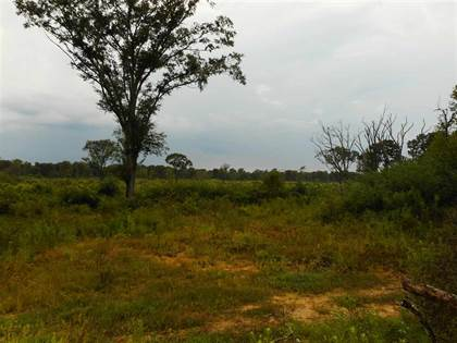 Lots And Land for sale in RIVER BEND ST, Lena, MS, 39094