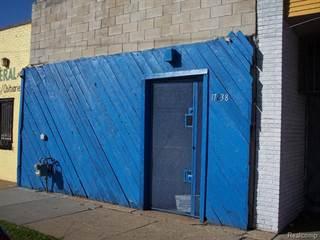 Comm/Ind for sale in 17238 W MCNICHOLS Avenue N, Detroit, MI, 48235