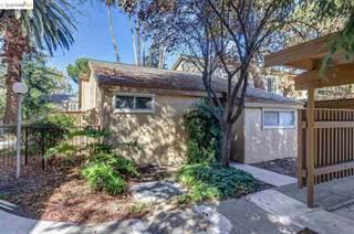 Condo for sale in 3055 Treat Blvd 11, Concord, CA, 94518