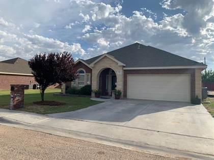 Residential Property for sale in 1307 N Doris Ave, Monahans, TX, 79756