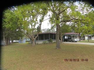 Residential Property for sale in 35716 SHELLEY DRIVE, Leesburg, FL, 34788