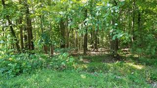 Land for sale in Tract 25 WALNUT GROVE DR, Callaway, VA, 24067