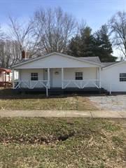 Single Family for sale in 524 Bush Avenue, Hurst, IL, 62949