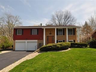 Single Family for sale in 18517 Pierce Terrace, Homewood, IL, 60430