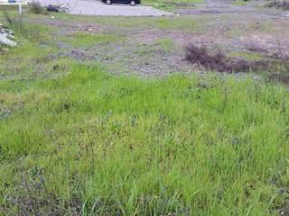 Land for sale in 24391 Israel Ct, Hayward, CA, 94541