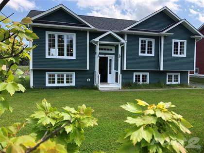 Residential Property for rent in 91 Springfield Road, South River, Newfoundland and Labrador, A0A 3V0