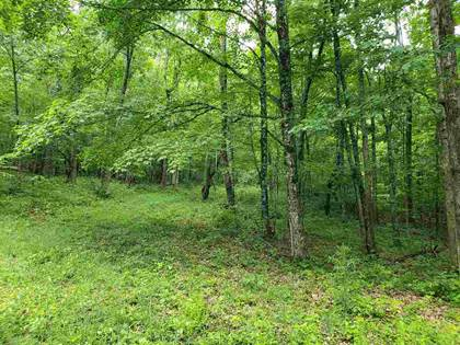 Lots And Land for sale in DRY RUN RD, Burnsville, VA, 24487