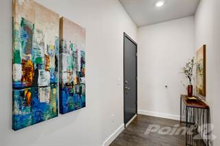 Apartment for rent in Solo Lofts, Seattle, WA, 98107