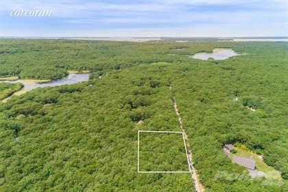 Land for sale in 284 Sprig Tree Path, Sagaponack, NY, 11962