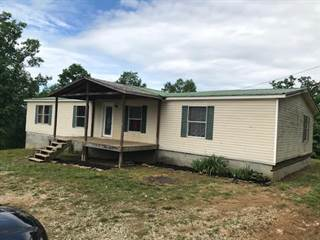 Single Family for sale in 416 Colorado Drive, Louisa, KY, 41230