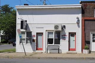 Comm/Ind for sale in 6 Lake Street, Pulaski, NY, 13142
