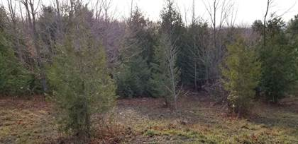 Lots And Land for sale in Parcel 10 Antrim Dells Ridgeview 10, Ellsworth, MI, 49729