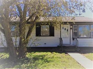 Single Family for sale in 503 W Elm, Hoopeston, IL, 60942