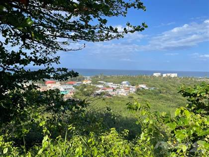 Lots And Land for sale in CARRETA 466 INTERIOR SECTOR VILLA PESQUERA, Isabela, PR, 00662