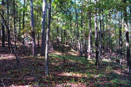 Lots And Land for sale in S Inglewood Avenue, Russellville, AR, 72801