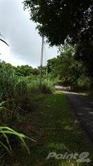 Land for sale in Aibonito - Sierra, Cuyon, PR, 00705