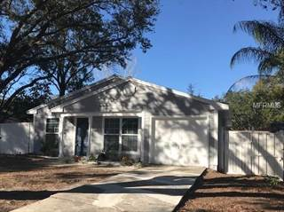 Single Family for rent in 2761 CACTUS HILL PLACE, Palm Harbor, FL, 34684