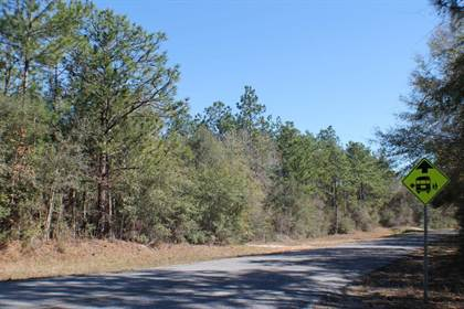 Lots And Land for sale in C-35 AC Old River Road, Baker, FL, 32531