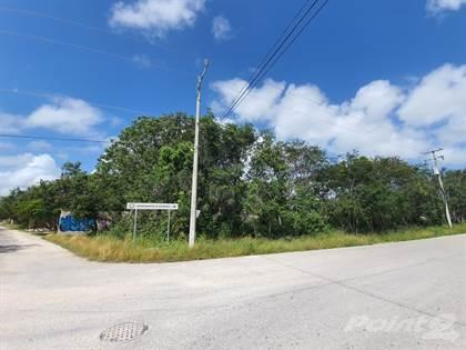 Residential Property for rent in Av. Tumbenkaah en Tulum Land for rent, Tulum, Quintana Roo