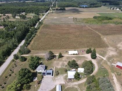 Farm And Agriculture for sale in 8328 8 Mile Road, Kaleva, MI, 49645