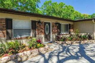 Single Family for sale in 11604 N BOULEVARD, Tampa, FL, 33612