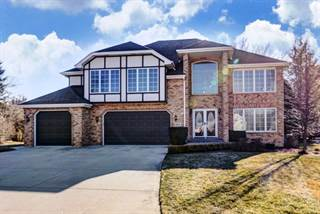 Single Family for sale in 8612 Dory Lane, Willow Springs, IL, 60480