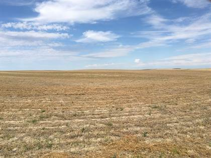 Farm And Agriculture for sale in 1072 Road, MT, 59201