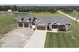 Single Family for sale in 2901 Lucie Lane, Farmington, MO, 63640