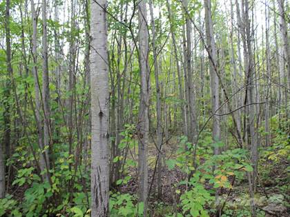 Lots And Land for sale in Lot 16 Off Three Ten Road, Mercer, WI, 54547
