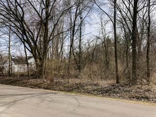Land for sale in 1326 Lykins Lane, Niles, MI, 49120