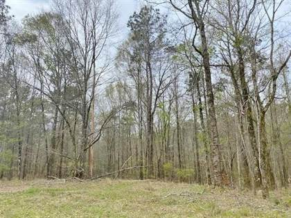 Lots And Land for sale in 000 Dixon Rd, MS, 39175