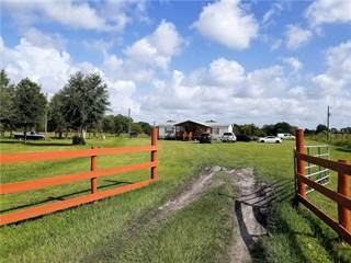 Residential Property for sale in 8124 MADISON ROAD, Ona, FL, 33865