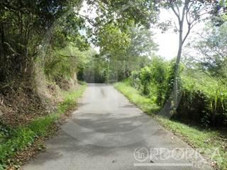 Land for sale in CARR. 853 KM. 7.8 PARCELA 11 BO. BARRAZAS, Carolina, PR, 00987