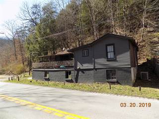 Single Family for sale in 3460 Highway 160, Premium, KY, 41845
