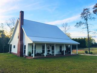 Single Family for sale in 287 Rawls Rd, Perkinston, MS, 39573