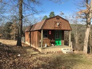 Single Family for sale in 303  E Osage  LN, Pineville, MO, 64856