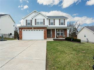 Single Family for sale in 115 Williamsburg, Crystal City, MO, 63019