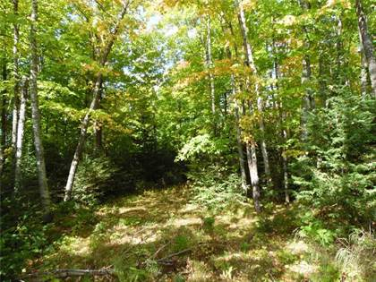 Lots And Land for sale in Lot 0 Pison Rd, Bennett, WI, 54873