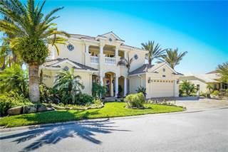 Single Family for sale in 21124 LOS CABOS COURT, Central Pasco, FL, 34637