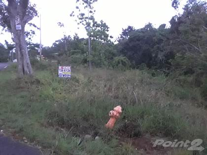 Lots And Land for sale in PR Road 349 KM 3.8, Mayaguez, Mayaguez, PR, 00680