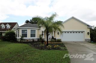 Residential Property for sale in 19930 Dolores Ann Ct, Lutz, FL, 33549