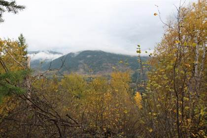 Vacant Land for sale in 3000 9TH AVENUE, Castlegar, British Columbia, V1N2X9