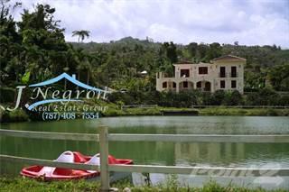 Residential Property for sale in Bo. Garzas, Adjuntas PR, Adjuntas, PR, 00601