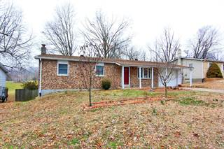 Single Family for sale in 131 North Donald, Jackson, MO, 63755