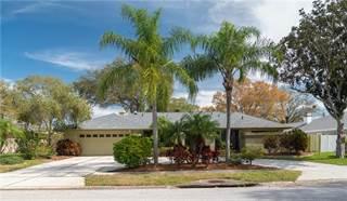 Single Family for sale in 1563 MISTY PLATEAU TRAIL, Clearwater, FL, 33765