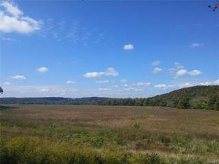 Farm And Agriculture for sale in 0 Tract 2 off Hwy MM, Grassy, MO, 63751