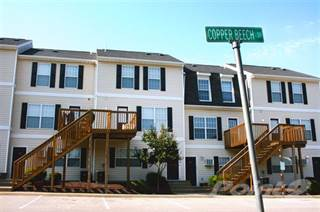 Apartment for rent in Copper Beech-Indiana, PA - 1 BR Small Townhome, Greater Chevy Chase Heights, PA, 15701