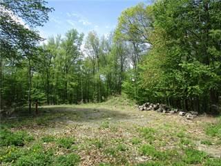 Land for sale in 3239 A Lexington Avenue, Mohegan Lake, NY, 10547
