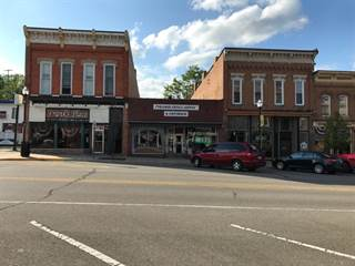 Manchester Mi Commercial Real Estate For Sale And Lease 3