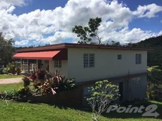 Residential Property for sale in Bo. Portillo, Adjuntas PR, Adjuntas, PR, 00601